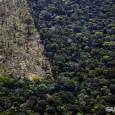 O Instituto Nacional de Pesquisas Espaciais (Inpe) acaba de soltar os dados de desmatamento que vão de agosto de 2010 a julho de 2011. Neste período, pelo menos 6.239 quilômetros […]