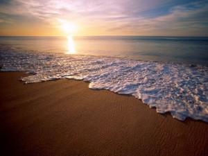 Tepco pode liberar água de Fukushima no mar