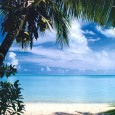 Sabe aquela praia que você costuma frequentar no verão? Ela pode estar imprópria para banho e você, sujeito a contrair doenças. Antes de entrar no mar, é bom se informar […]