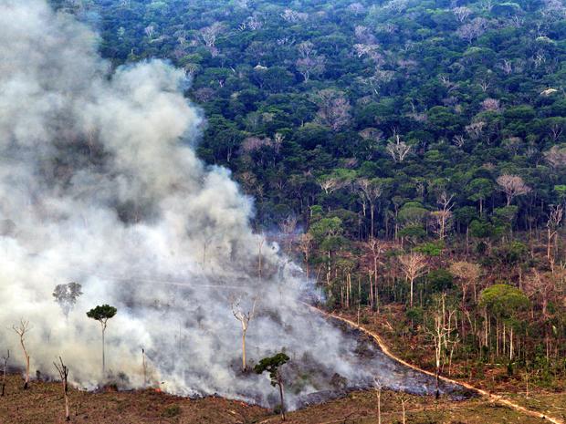 Desmatamento e queimada registrados no Sul do estado do Amazonas. Sistema de medição do Inpe detectou devastação de 385 km² em outubro de 2011. Já o estado foi resposável por derrubar cerca de 19 km² de floresta (Foto: Divulgação/Greenpeace/Marizilda Cruppe/EVE )