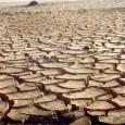 Um estudo, realizado pela consultoria estratégica de gestão e negócios, OThink, durante setembro e outubro de 2011, apontou que mais de 2/3 dos entrevistados acreditam que haverá falta de água […]