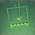 """A Chevron recebeuontem (15) autorização da Agência Nacional do Petróleo (ANP) para injetar um terceiro """"tampão"""" de cimento no poço da petroleira que provocou o vazamento de óleo no dia […]"""