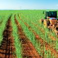 Diante de uma safra considerada desastrosa por técnicos do setor, o presidente da União da Indústria da Cana-de-Açúcar (Unica), Marcos Jank, disse que é preciso dar competitividade ao etanol brasileiro. […]