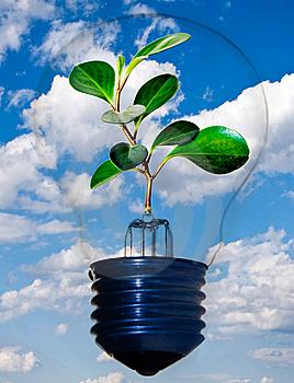 ONU declara 2012 como Ano Internacional de Energia Sustentável para Todos