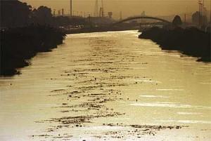 Tietê Vivo: dez mandamentos para recuperar o rio de SP
