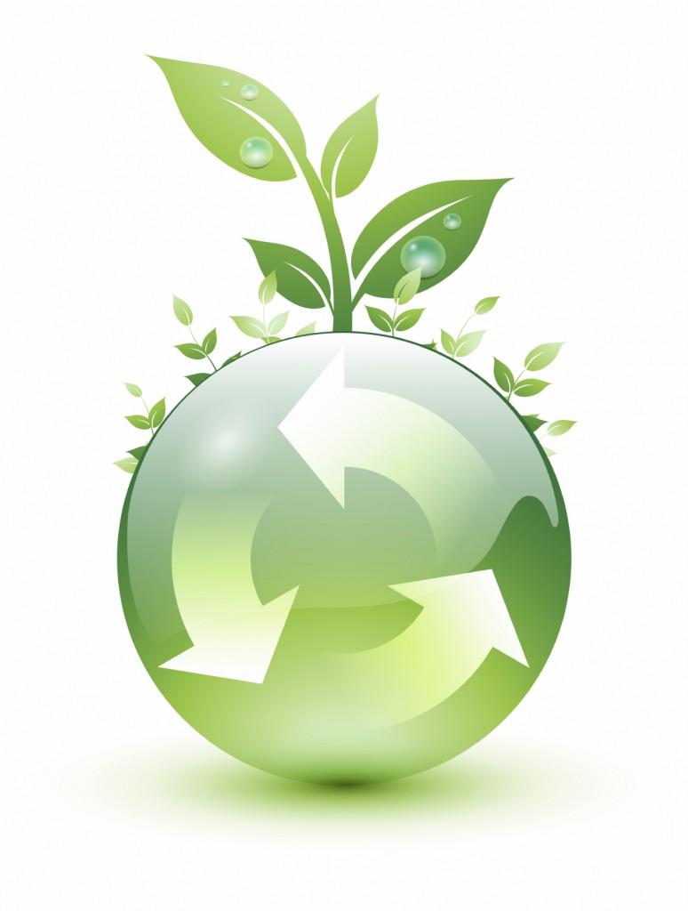 Reutilize - Reduza - Recicle: 3 R's