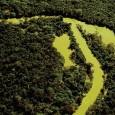 Amazônia maranhense é dona de rica biodiversidade, ocupa 26% do bioma amazônico, encontra-se em 62 municípios do Maranhão e representa, em termos de bioma, 34% do território do Estado. No […]