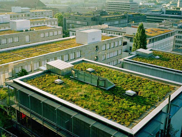 Ecotelhados fazem parte de uma seleção de iniciativas sustentáveis, do setor de energia ao da construção e tecnologia, que ajudam a minimizar nosso impacto sobre o planeta e prometem ganhar força este ano