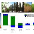 Pesquisadores calculam a capacidade das florestas de resfriar o ambiente e salientam que esse serviço ecossistêmico deveria ser levado em conta para justificar ações de mitigação do aquecimento global e […]