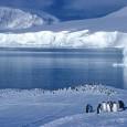 Uma enorme piscina de água doce no Oceano Ártico está se expandindo e pode baixar a temperatura da Europa, ao diminuir a velocidade da corrente oceânica, segundo estudo científico publicado […]