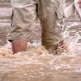 Devido às recentes chuvas no estado fluminense, a Secretaria Estadual de Saúde do Rio divulgou hoje (4) uma nota técnica com orientações sobre leptospirose, direcionada aos municípios e profissionais de […]