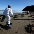 Um vazamento de cerca de 160 barris de petróleo foi detectado na bacia de Santos, nesta terça-feira, em um poço na camada pré-sal perfurado pela Petrobras. A estatal informou que […]