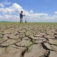 Uma compilação de estudos de cientistas brasileiros e do exterior aponta que a expansão agropecuária e as mudanças climáticas já causam distúrbios na bacia amazônica — principalmente na borda da […]
