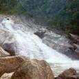 A compra da Cachoeira do Escorrega pelo Instituto Chico Mendes de Conservação da Biodiversidade (ICMBio) no início de dezembro pegou de surpresa os moradores e comerciantes do município de Visconde […]