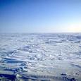 A mudança este ano na liderança de algumas das nações mais poluidoras do mundo não deve minar os avanços em direção ao estabelecimento de um novo acordo climático compulsório até […]