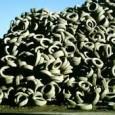 O descarte inadequado de pneus ainda persiste como um grave problema ambiental no Brasil. Apesar de duas resoluções do Conselho Nacional do Meio Ambiente (Conama) obrigarem os fabricantes e importadores […]