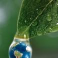 COLÓQUIO INTERNACIONAL Princípio da Proibição doRetrocesso Ambiental Brasília, 29 de março de 2012    PROGRAMA 13h30 -Abertura Rodrigo Rollemberg (Senador, Presidente da Comissão de Meio Ambiente do Senado […]