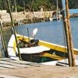 Rios de 11 Estados brasileiros foram analisados pela equipe da Fundação SOS Mata Atlântica e nenhum obteve resultado satisfatório na qualidade da água. Forma realizadas 49 avaliações no Ceará, Piauí, […]
