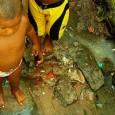 Há 19 anos celebra-se, no dia 22 de março, o Dia Mundial da Água. Entretanto, com a ameaça de escassez e números alarmantes sobre o acesso ao recurso hídrico, há […]