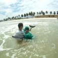 Dois golfinhos foram encontrados encalhados no litoral de Alagoas desde a última sexta-feira (9), segundo informações da organização não governamental Instituto Biota. Nos dois casos, o resgate não teve sucesso […]
