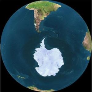 Plantas e animais de outros continentes ameaçam invadir Antártida