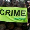 Ativistas do Greenpeace entregaram hoje (2) ao Instituto Brasileiro do Meio Ambiente e dos Recursos Naturais Renováveis (Ibama), em Santarém, no Pará, um relatório com fotos e mapas que mostram […]