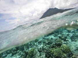 Para cientista, combate às alterações climáticas deve ser encarado como uma forma de seguro.
