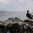 A Dorsal, empresa de Curitiba especializada em consultoria ambiental, viu a demanda por seus serviços disparar desde a entrada em vigor da Política Nacional de Resíduos Sólidos em dezembro de […]