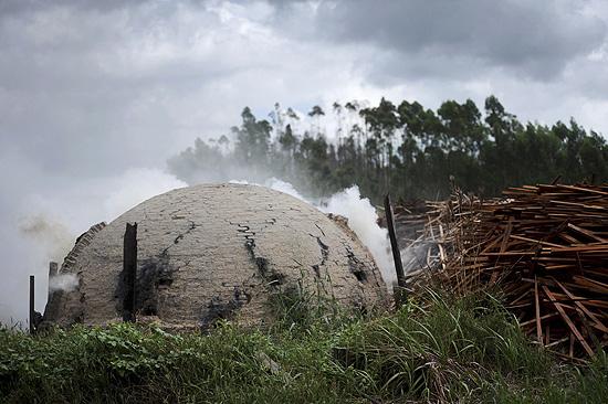 Fornos clandestinos queimam madeira da Amazônia