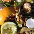 Transformar restos de comida em adubo e energia para aquecimento de água, com baixo custo, é a meta de uma pesquisa da Fundação Osvaldo Aranha (UniFoa), em parceria com a […]