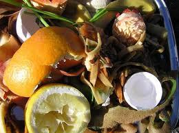 Projeto no Rio de Janeiro transforma restos de comida em adubo e energia