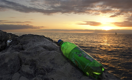 O lixo pode alterar a cadeia alimentar marinha/Foto: DardoEloy