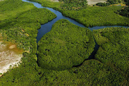 Hidrelétricas-plataforma da Amazônia devem ser licitadas até 2014