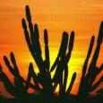 A vegetação da Caatinga pode ser proporcionalmente mais eficiente do que as florestas úmidas para absorver o gás carbônico presente na atmosfera, em um processo natural, conhecido como sequestro de […]