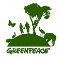 O coordenador de campanhas da organização não governamental (ONG) Greenpeace, Márcio Astrini, criticou a falta de detalhamento dos vetos e modificações no texto do Código Florestal, anunciados hoje (25) pelo […]