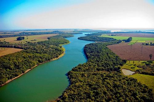 Governo obriga replantio de mata nativa nas áreas de preservação ao longo dos rios