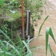 A prevenção de riscos com participação comunitária reduziu o perigo de inundações e falta de água na cidade colombiana de Neiva. Neiva, Colômbia, 14 de maio de 2012 (Terramérica).- A […]