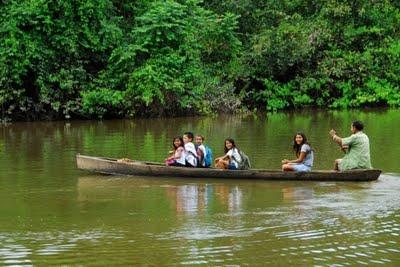 Cerca de 20% da população mundial depende diretamente das florestas para sobreviver