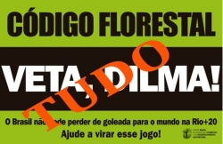Dilma tem até dia 25 para decidir sobre Código Florestal