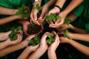 Inspiradas na Rio+20, escolas públicas e privadas da Gávea discutem desenvolvimento sustentável