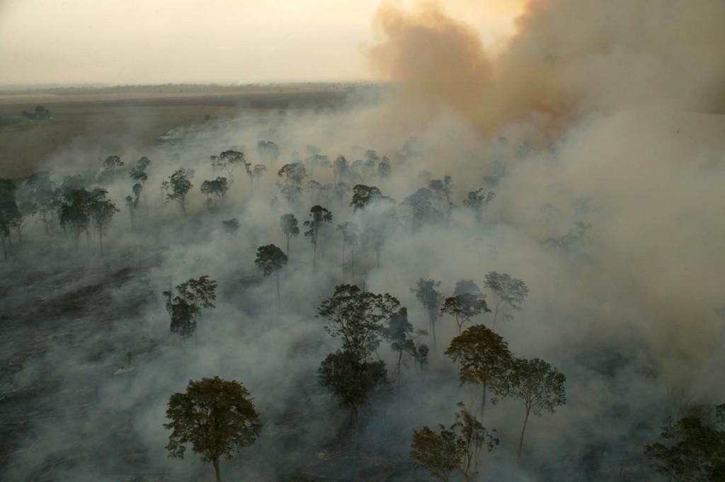 Mesmo desmatando menos, América Latina produz mais emissões