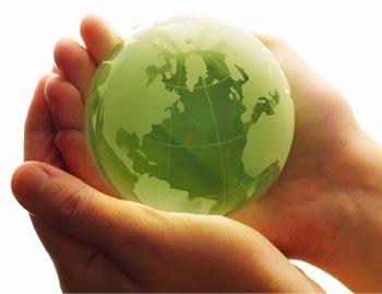 Brasileiro é premiado pela ONU por esforços na área de desenvolvimento sustentável