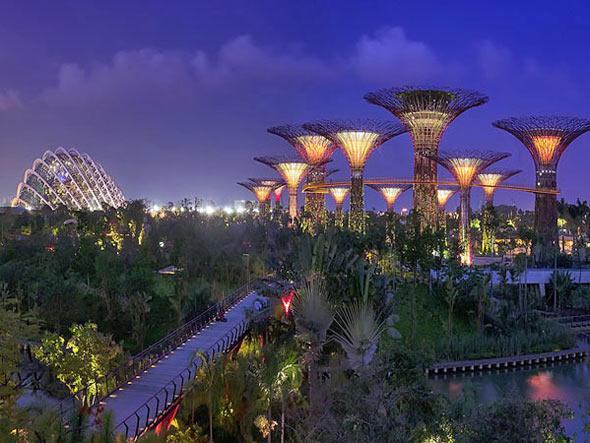 """Singapura quer virar a capital """"tecnobotânica"""" mundial"""