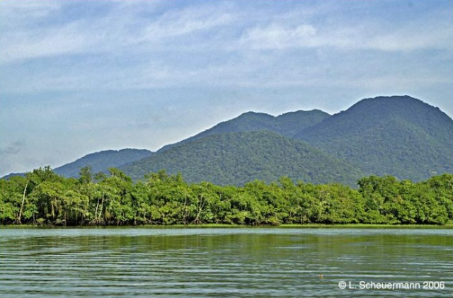 Reserva Natural Serra do Itaqui, área criada com ajuda da The Natural Conservancy. Foto: L. Scheuermann, fonte: Wikimapia