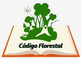 Comissão do Congresso prestes a votar MP do Código Florestal