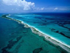 Os oceanos e sua importância para os serviços ambientais