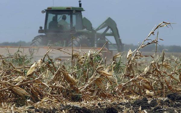Trator ara uma plantação de milho já colhido, no Texas. Foto: Eric Gay/Associated Press