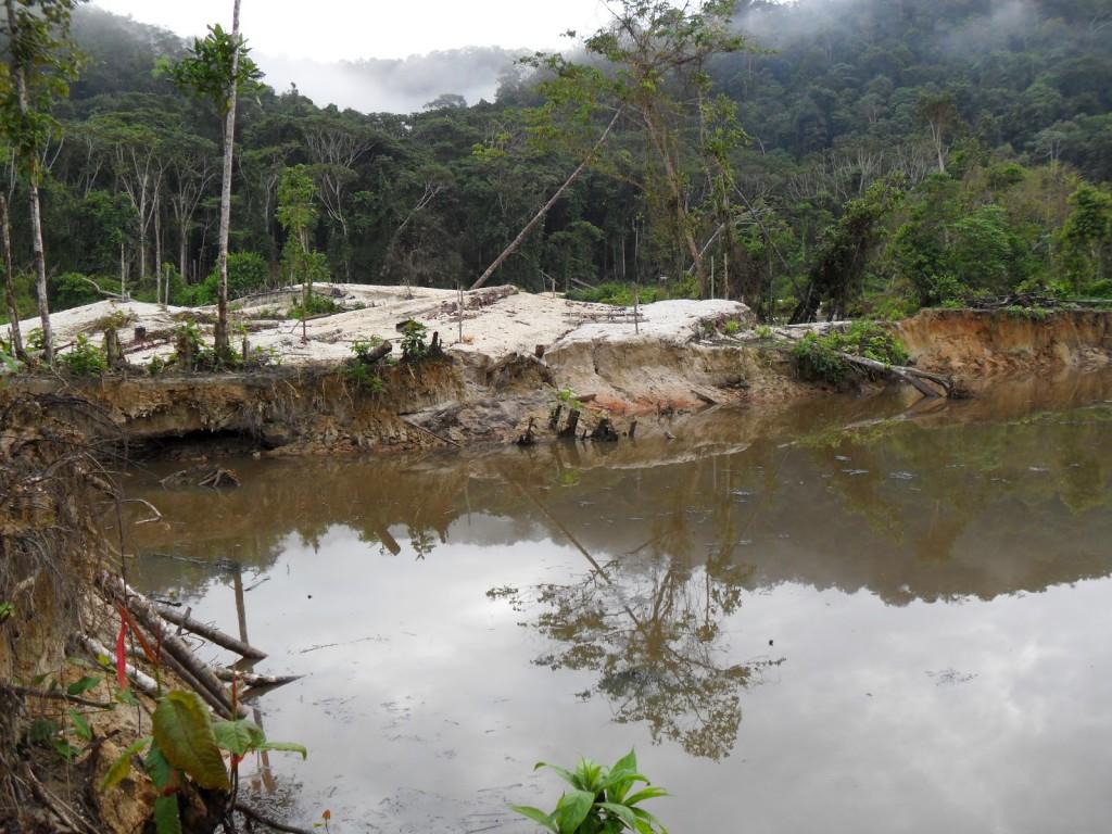 PF prende 26 em operação para reprimir garimpo ilegal em terra yanomami