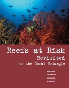 """As ameaças à região do Triângulo de Corais, a """"Amazônia"""" do mundo marinho, são muito maiores do que a média global e o principal culpado é a sobrepesca, mostra um novo estudo"""