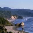 Cientistas encontraram grande concentração de cafeína nas águas do Oceano Pacífico que banham o litoral do estado do Oregon, na região noroeste dos Estados Unidos. A pesquisa, realizada pela Universidade […]